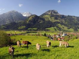 Bergsommer in den Alpen - Bad Hindelang