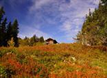 Herbstzeit ist Wanderurlaub -